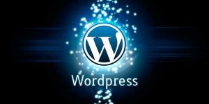 idioma wordpress